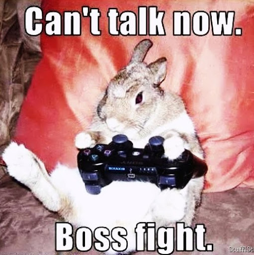 Rabbit-Meme-Playing-PS3-Videogames-cant-talk-now-boss-fight-lol-lulz-funny-joke-pictures-animals